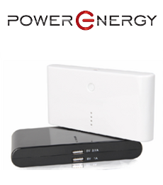 PowerEnergy PE12000P